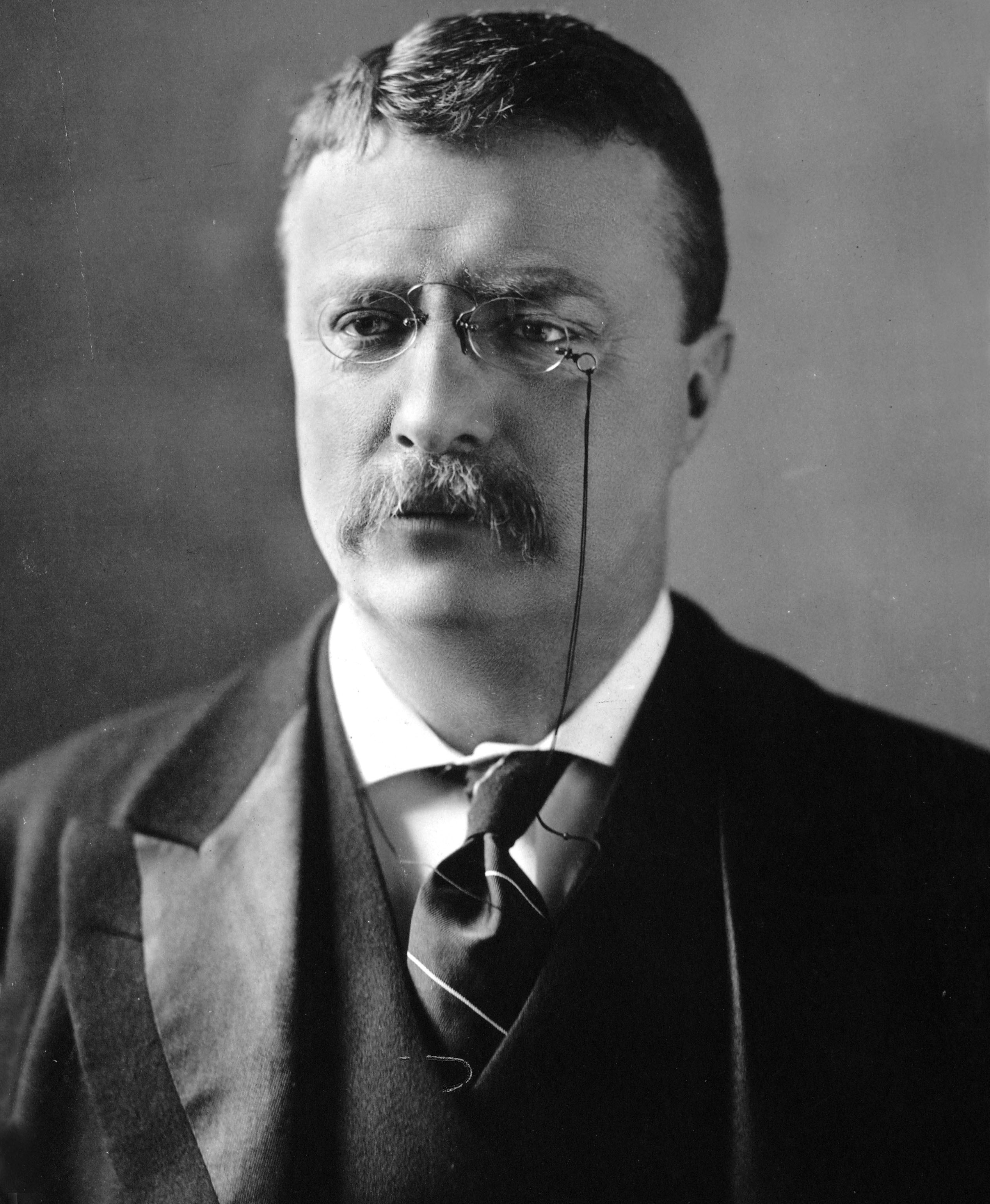 an in depth look at the early political life of theodore roosevelt