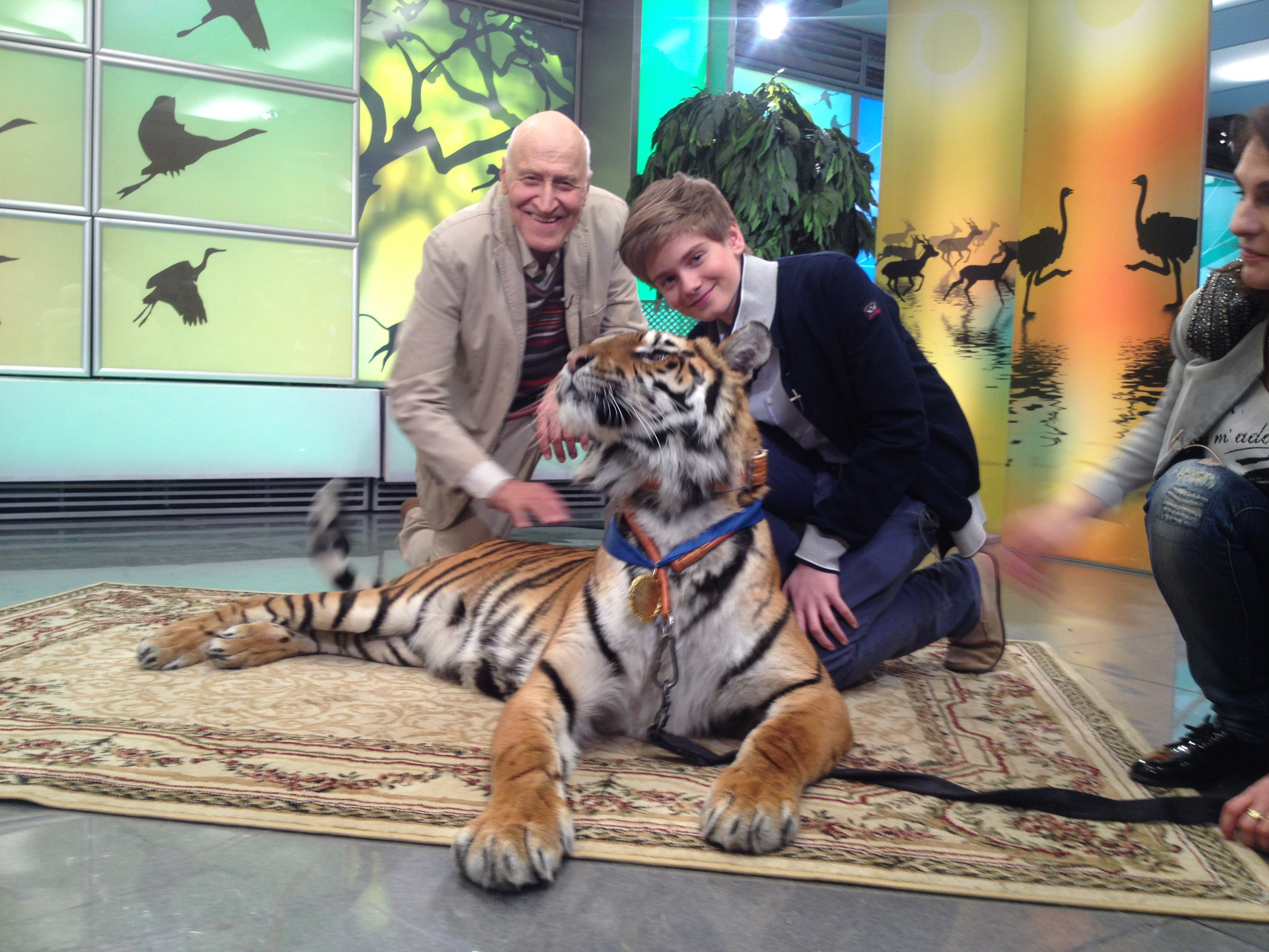 Алексей Лапин, ведущий программы «В мире животных» - фото 1